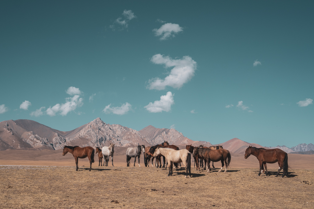 Song Kul, Kirghizistan
